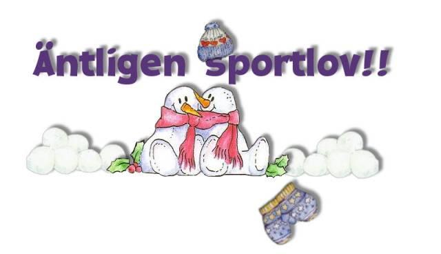 Bildresultat för sportlov